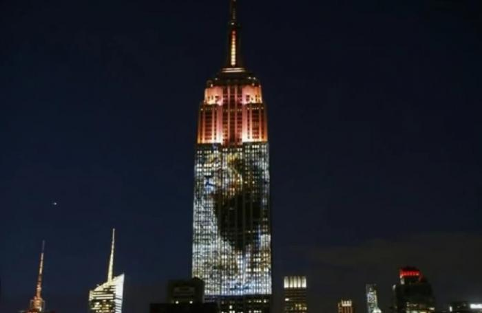 Imagini cu animale pe cale de dispariție, proiectate pe Empire State Building - VIDEO